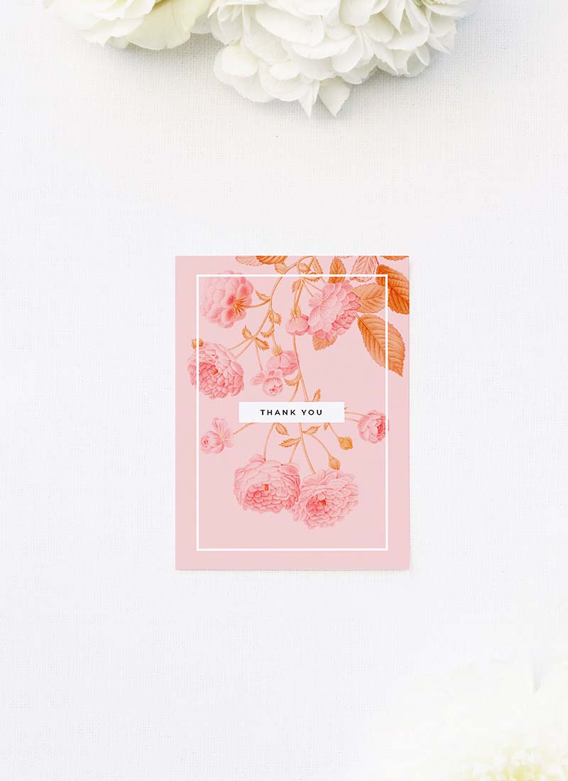 Light Pink Modern Botanical Wedding Thank You Cards Light Pink Modern Botanical Wedding Invitations
