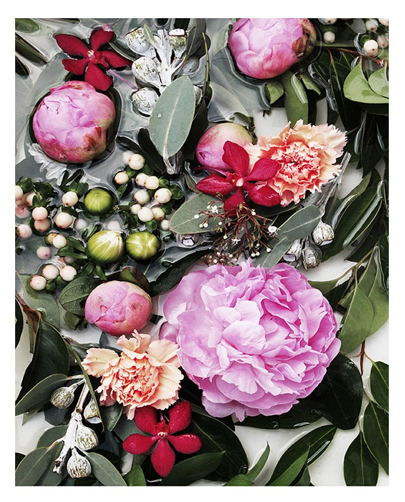 Botanical Floral Art Print - Botanical Wall Art with Pink Peonies and Lush Green Leaves