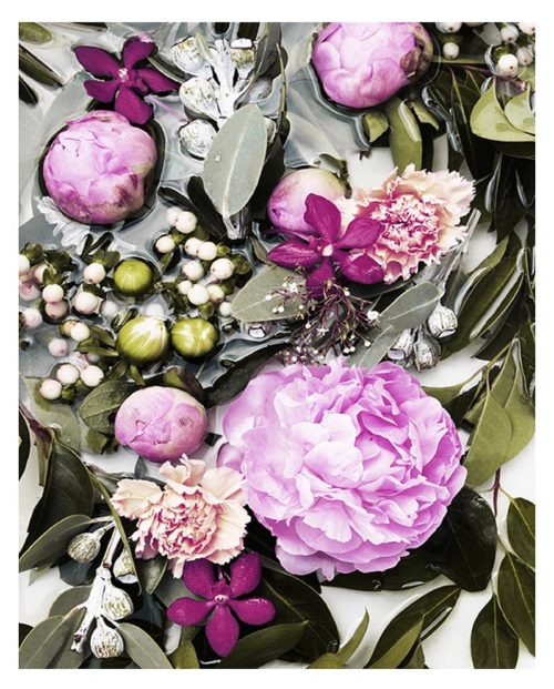 Green Purple Floral Art Print - Green Purple Modern Floral Wall Art - Pink Peonies Green Native Botanicals