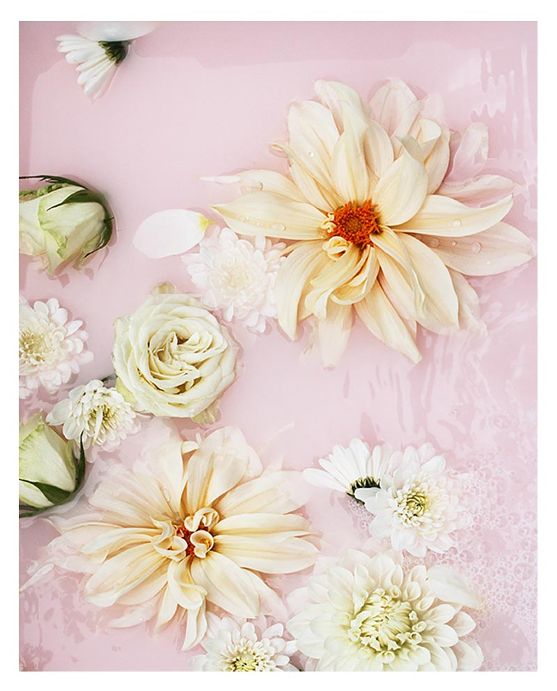 Pale Pink Floral Photo Print - Pale Pink Modern Floral Photographic Wall Art