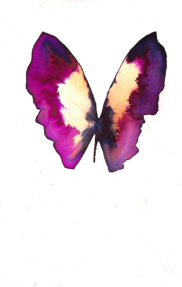ink painting butterfly pink purple colour scheme palette