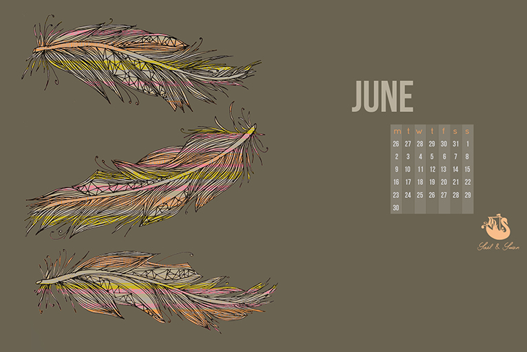 free desktop background wallpaper feather illustration freebie giveaway monthly wallpaper sail and swan
