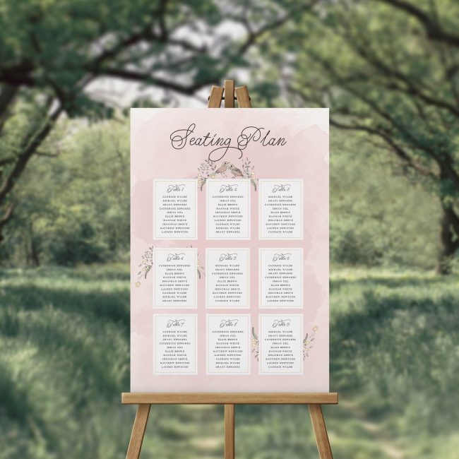 Love Birds Illustrated Watercolour Seating Chart Romantic Seating Plan Melbourne Sydney Perth Adelaide brisbane Canberra Wedding Seating Sign
