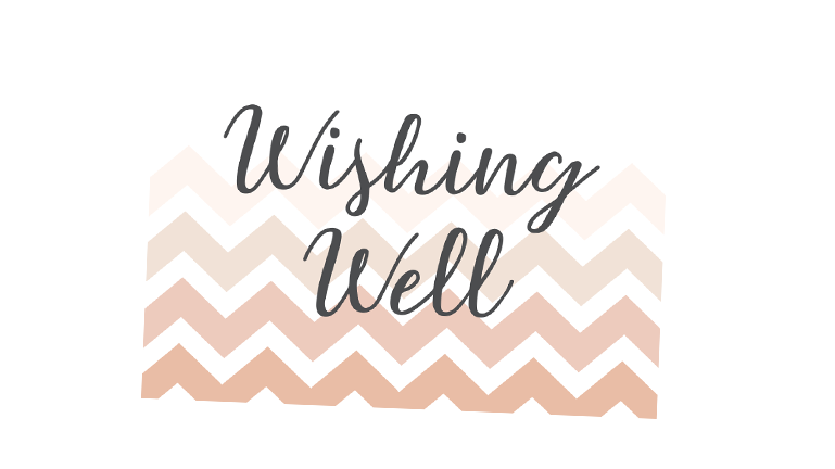 The 6 best wishing well wording examples wishing well wording ideas so you can breathe a sign of relief you dont need to be afraid to add wishing well wording to your invitations or on a separate card filmwisefo