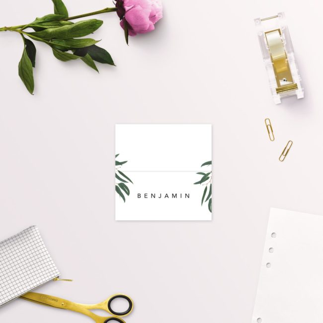 Simple Elegant Eucalyptus Wedding Name Place Cards Folded