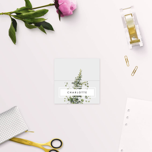 Modern Minimal Grey Green Botanical Wedding Name Place Cards Folded