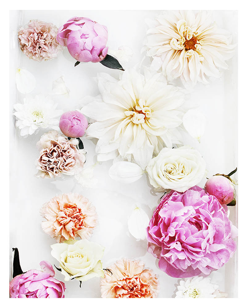 Colourful Floral Wall Art - Floral Art Print with Pink Peonies White Dahlias Orange Flowers