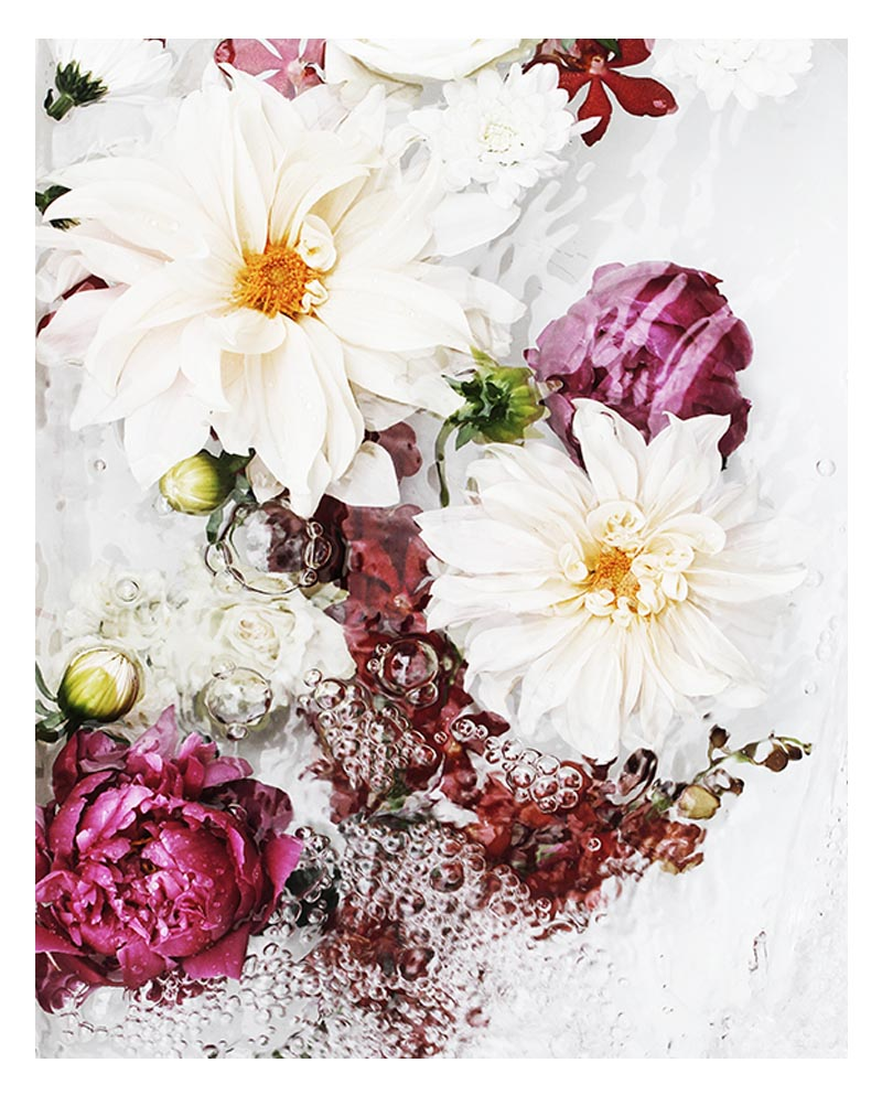 Beautiful Floral Art Print - Abstract Floral Wall Art with Beautiful Dahlia Flowers and Orchids