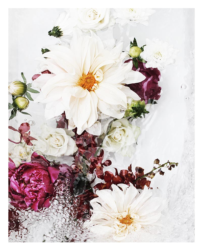 Beautiful Floral Wall Art - Abstract Floral Art Print with Pink Peonies Dahlia Flowers and Orchids