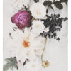 Faded Photographic Floral Wall Art - Faded Photographic Floral Art Print - Faded Flowers, Botanicals, Roses and Dahlias