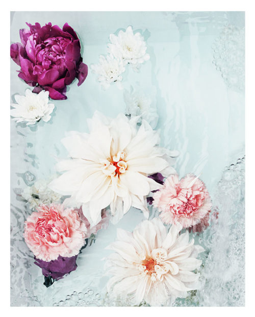 Abstract Floral Photo Wall Art - Photo Art Print - Colourful Pink Magenta Peonies Cream Dahlia Flowers