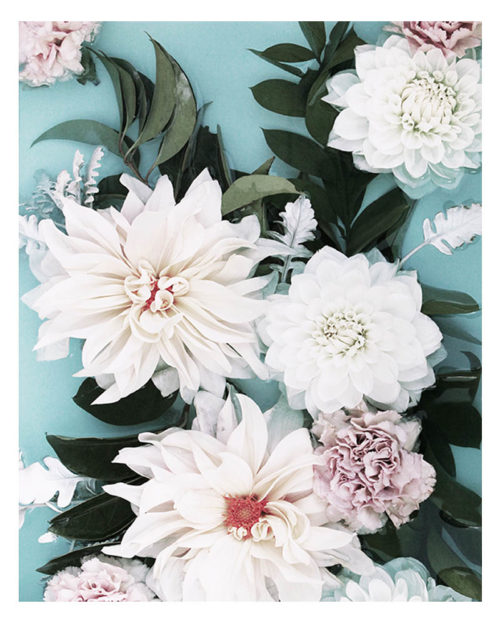 Elegant Floral Photo Art Print - Elegant Floral Photo Wall Art - Stunning Dahlia Flowers
