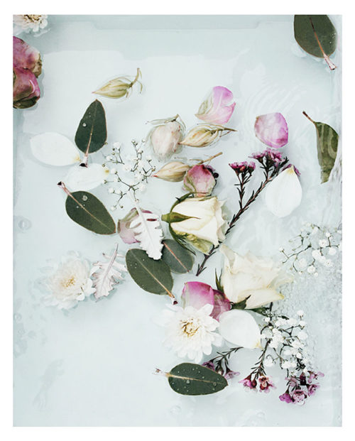 Spring Flowers Art Print - Floral Wall Art with Scattered Roses, Petals and Leaves