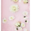Blush Pink Abstract Floral Photograph Print - Pastel Pink Modern Abstract Floral Photographic Wall Art