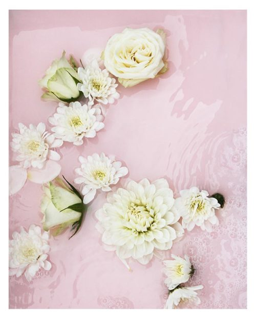 Blush Pink Abstract Photographic Wall Art - Pastel Pink Modern Abstract Floral Photograph Print