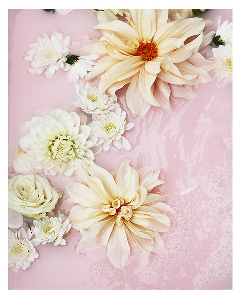 Pastel Pink Floral Photographic Print - Pastel Pink Modern Floral Photographic Wall Art